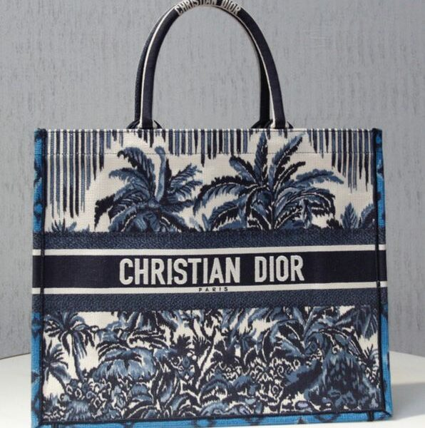 Christian Dior Book Tote Blue